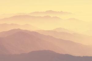 paysage-brume
